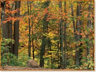 Autumn Ridge Vacation Lodging In The Hocking Hills Ohio