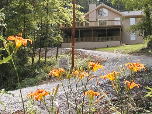 Vacation Cabins In The Hocking Hills Ohio Scenic Wonderland