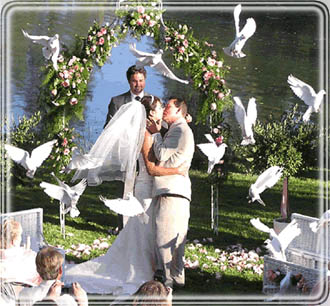 Doves Have Long Been A Symbol Of Peace Love And Joy Making Them Ing Addition To Any Wedding With Dove Release Typically Local Breeder